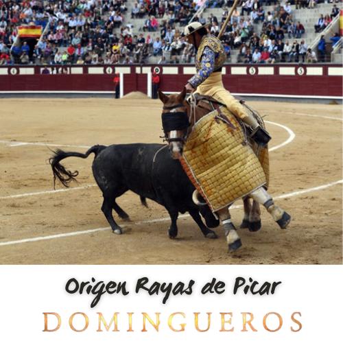 Domingueros - Origen Rayas de Picar