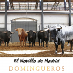 Domingueros - El novillo de Madrid